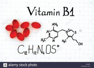 Bổ sung Vitamin B1 cho vật nuôi